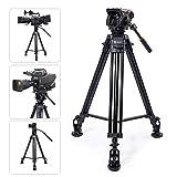 TARION Kamera Video Stativ 160cm mit Videoneiger aus Aluminiumlegierung für Sony Panasonic JVC Kameras und Camcorder (max. Nutzlast 15 Kg)