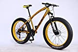 MYTNN Fatbike 26 Zoll 21 Gang Shimano Fat Tyre Mountainbike Gold 47 cm RH Snow Bike Fat Bike