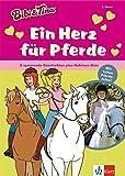 Bibi & Tina: Ein Herz für Pferde: 2 spannende Geschichten plus Hufeisen-Quiz: Erstleser 2. Klasse (Lesen lernen mit Bibi und Tina)