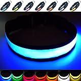 Fun Pets Super Bright LED Collar (Mittel (40cm - 50cm / 15.7' - 19.7'), Blau)