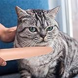 Katzenbürste Katzenzunge Kamm Massagekamm Haustier Tägliches Haarpflegeprodukt Katzebürste Waschbar Hundesalon Massagebürste