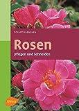 Rosen pflegen und schneiden (Garten-Ratgeber)