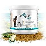 Ida Plus - 100% Grünlippmuschel-Pulver (100 g) - Ohne Zusätze - Für Gelenke bei Hunden, Katzen und Pferden - Versorgung des Bewegungsapparates mit...