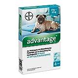 Advantage 100 Lösung für Hunde 4-10 kg, 4 x 1 ml