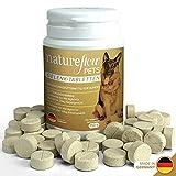 Gelenktabletten für Hunde - mit Grünlippmuschel, MSM und Teufelskralle - Hohe Akzeptanz beim Hund da keine Kapseln - 100 Tabletten für bis zu 6 Monate - In...