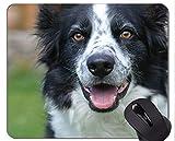 Schäferhund-Gras-sitzender Hund Mauspads, Collie Mauspad
