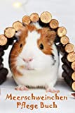 Meerschweinchen Pflege Buch: Meerschweinchen Buch für Kinder. Meerschweinchen Zubehoer, Meerschweinchenpflege für Kinder, Planungshilfe und Checkliste ......