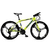 Xiaoyue 24-Zoll-Mountainbikes, Doppelscheibenbremse Hardtail Mountainbike, Herren Damen High-Carbon Stahl All Terrain Alpine Fahrrad, 21 Geschwindigkeit,...