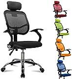 femor Bürostuhl, ergonomischer Schreibtischstuhl, Chefsessel mit Rollen, Bürodrehstuhl mit Verstellbarer Lordosenstütze, Kopfstütze, Armlehne und...