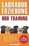 Labrador Erziehung und Training: Das große Labrador Buch - Alles über Hundeerziehung, Ernährung, Welpen, Pflege, Hundesprache uvm. - inkl. Clickertraining...