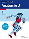 Endspurt Vorklinik: Anatomie 3: Die Skripten fürs Physikum