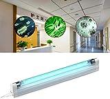 QDWRF UV Ozon Sterilisation Lampe, Hochwertige UV Desinfektionslampe für Badezimmer, Küche, Büro, Hotel, Schlafzimmer, Krankenhaus 8W