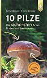 10 Pilze: Die sichersten Arten finden und bestimmen
