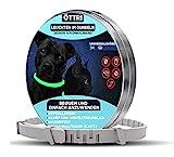 Zeckenhalsband für Hunde und Katzen   Leuchtendes Präventionshalsband gegen Parasiten mit bis zu 8-Monatigen Schutz   Fluoreszierendes Halsband universell auf...