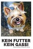 Kein Futter Kein Gassi Worte meines Yorkshire Terrier: 120 Seiten liniert in ca. A5 Softcover   Perfekt als Notizbuch für alle kleinen Hundebesitzer,...