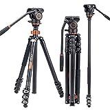 Professionelles Video-Stativ-Einbeinstativ-Kit, Cayer AF2451 67-Zoll-Aluminium-Teleskop-Flip-Lock-Stativ mit H4-Fluidkopf und Abnehmbarer Stativbasis für...