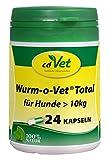 cdVet Naturprodukte Wurm-o-Vet Total für Hunde  10 kg, 24 Kapseln - Hund - Ergänzungsfuttermittel - Darmunterstützung - Stärkung der Verdauung - Mangel an...