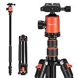 GEEKOTO Stativ Kamera Stativ 200cm, Aluminum Reisestativ mit Einbeinstativ und 360° Panorama Kugelkopf, 1/4 Schnellwechselplatte und Stativtasche für Canon...