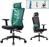 Komene Ergonomischer Bürostuhl mit verstellbaren Armlehnen, Kopfstütze, Lordosenstütze und Rückenlehne. Schwarze Computerstühle mit 2D Armlehne für...