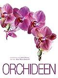 Orchideen: Alles Wissenswerte über die sinnlichste aller Blumen. Bildband der bezauberndne und sinnlichen Pflanze mit den unterschiedlichsten Arten in Groß-...