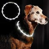 Anicoll LED Leuchthalsband Hunde Halsband weiß USB wiederaufladbar - Längenverstellbarer Haustier Sicherheit Kragen für Hunde und Katzen- 3 Modus 12...