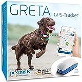 Greta 090148-02 GPS Tracker für Hunde, Katzen, Kinder und Wertgegenstände, Hundetracker Liveortung + Warnsystem per APP, Peilsender Wasserdicht,genaue GPS...