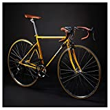 Adult Rennrad, 14 Geschwindigkeit Retro High-Carbon Stahlrahmen-Straßen-Fahrrad, Ultra-Light-Fahrrad mit Doppel-V Brake, ideal for die Straße oder Schmutz...