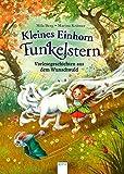 Kleines Einhorn Funkelstern. Vorlesegeschichten aus dem Wunschwald