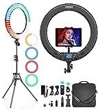 IVISII Ringlicht mit Fernbedienung, 19 Zoll/48 cm Ringleuchte mit 4 Farbfiltern für Smartphone/Kamera/Tablet, Ringlicht mit Stativ für Live-Streaming,...