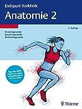 Endspurt Vorklinik: Anatomie 2: Die Skripten fürs Physikum