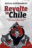 Revolte in Chile: Aufbruch im Musterland des Neoliberalismus
