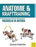 Anatomie und Krafttraining (Anatomie & Sport, Band 1): Muskeln in Aktion