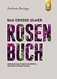 Das große Ulmer Rosenbuch: Verwendung, Pflege und Sorten für jede Gartensituation
