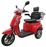 """Elektromobil """"VITA CARE 1000"""", 25 km/h, 60 Kilometer Reichweite, Seniorenmobil, E-Roller, E-Scooter mit Straßenzulassung, Elektroroller, Senioren..."""