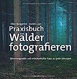 Praxisbuch Wälder fotografieren: Stimmungsvolle und märchenhafte Fotos zu jeder Jahreszeit