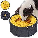 Lixdee Schnüffelteppich für Hunde zum Schnüffeln DEE.DEN – Hundespielzeug Intelligenz Schnüffeldecke Hunde Spielzeug Schnüffelspielzeug mit 3...