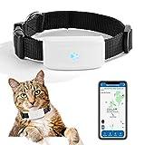 Zeerkeer Mini GPS Locator Echtzeit Kleine Haustier GPS Tracker TK911 für Hunde Katze Tracking Device Locator mit Pet Kragen Geschichte Route Wasserdicht Track...