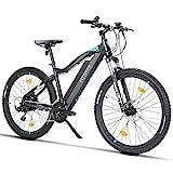 Fitifito MT27,5 Plus-48V Zoll Elektrofahrrad Mountainbike E-Bike Pedelec, 48V 13Ah 624Wh Samsung Cells Lithium-Ionen USB, 48V 250W Heckmotor, 21 Gang Shimano...