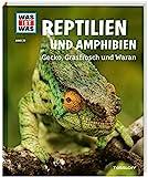 WAS IST WAS  Bd. 20 Reptilien und Amphibien. Gecko, Grasfrosch und Wa (WAS IST WAS Sachbuch, Band 20)