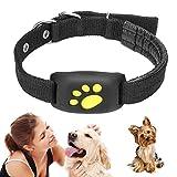 Peaches Stores Haustier-GPS-Tracker, intelligentes Hundekatzenhalsband, Aktivitätsmonitor für Haustiere, wasserfeste GPS-Rückruffunktion USB-Lade-GPS-Tracker...