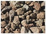 Der Naturstein Garten 5 kg Grill Lava Steine 32-56 mm - Gasgrill Elektrogrill Lavastein Lavasteine Kies Kiesel Aquarium - Lieferung KOSTENLOS