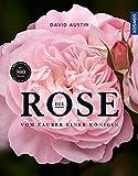Die Rose: Vom Zauber einer Königin