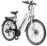 AsVIVA E-Bike Trekkingrad - 28' CityBike Tiefeinsteiger | 36V 14,5Ah Samsung Zellen Akku | 7 Gang Shimano Schaltung | sehr starker 250W Heckmotor | Alu...
