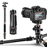 Rangers Kamera Stativ, 141cm Aluminium Reisestativ Fotostativ mit 360° Panorama Kugelkopf, Ultra Kompaktes und Leichtes Design, Ideal für Reisen und...