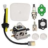 ouyfilters c1u-k54a Vergaser mit Luftfilter-Dichtung Fuel RePower Kit für Echo 2Cycle Mantis 72227222e 7222M...