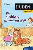 Duden Leseprofi – Ein Fohlen kommt zur Welt, 1. Klasse (DUDEN Leseprofi 1. Klasse)