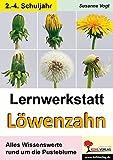 Lernwerkstatt Löwenzahn: Alles Wissenswerte rund um die Pusteblume