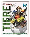 Wissen. Tiere: Die Tierwelt in spektakulären Bildern
