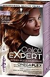 Schwarzkopf Color Expert Intensiv-Pflege Color-Creme 6.68 Haselnuss-Hellbraun, 3er Pack (3 x 167 ml)