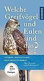 Welche Greifvögel und Eulen sind das?: Über 50 Arten einfach bestimmen (Kosmos-Naturführer Basics)